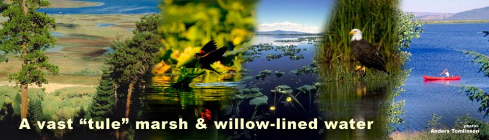 Agency Lake is a natural lake located west of Chiloquin in Klamath County, Oregon. It is actually the northern arm of Upper Klamath Lake, connected by a narrow channel. Its primary inflow is the Wood River, while its outflow is Upper Klamath Lake. The lak